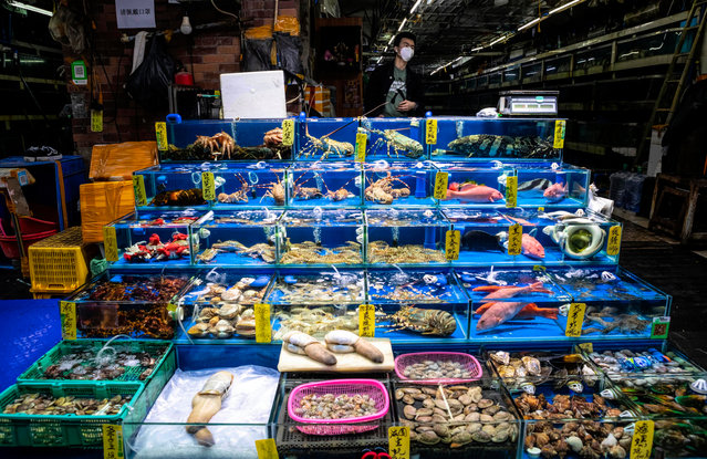 A person wearing a mask works on in a seafood market in Guangzhou, Guangdong province, China, 25 February 2020. Guangzhou South China Sea Food Market was previously well known for exotic wildlife animals like crocodiles, yet now most of the shops in the market are closed. The Covid-19 epidemic that has killed more than 2,500 people mostly in China, has been linked to wild animals carrying a coronavirus and sold in a Wuhan wet market for food. On 24 February, China banned the trade and consumption of wild animals in order to battle coronavirus. (Photo by Alex Plavevski/EPA/EFE)
