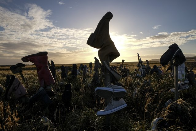 An ever-growing garden of shoes sprouts in a field just outside the capital city on Wednesday, February 10, 2016, in Stanley, Falkland Islands. The shoes are said to be left by visitors promising to return for the items they left. (Photo by Jahi Chikwendiu/The Washington Post)