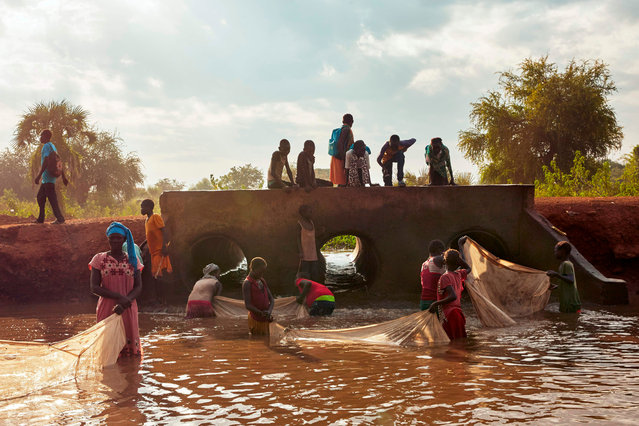 Refugees and the local host community fish together at a stream formed from intense flooding in Maban, South Sudan on Wednesday November 27, 2019. Large areas of eastern South Sudan have been affected by heavy rains in the past months, leaving an estimated 420,000 people displaced from their homes. (Photo by Alex McBride/AFP Photo)