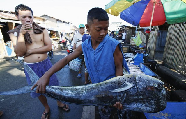 A fish vendor carries a catch at a sidewalk market in Tacloban city in central Philippines November 7, 2014. Almost 25,000 people still live in tents, shelters and bunkhouses in the hardest hit regions in central Philippines, including Tacloban City, considered Haiyan's ground zero as it accounted for almost half of the death toll. The Philippines are preparing to commemorate victims of Typhoon Haiyan, ahead of the one-year anniversary of the disaster on November 8, according to a government official. (Photo by Erik De Castro/Reuters)