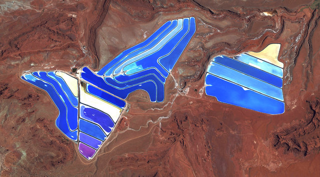 Evaporation ponds are visible at the potash mine in Moab, Utah, USA. The mine produces muriate of potash, a potassium-containing salt that is a major component in fertilisers. The salt is pumped to the surface from underground brines and dried in massive solar ponds that vibrantly extend across the landscape. As the water evaporates over the course of 300 days, the salts crystallise out. The colours that are seen here occur because the water is dyed a deep blue, as darker water absorbs more sunlight and heat, thereby reducing the amount of time it takes for the water to evaporate and the potash to crystallise. (Photo by Benjamin Grant/Penguin Random House)