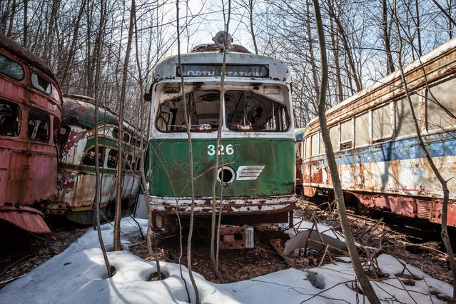 Abandoned trolley graveyard in Pennsylvania. (Photo by Matthew Christopher/Abandoned America/Caters News Agency)