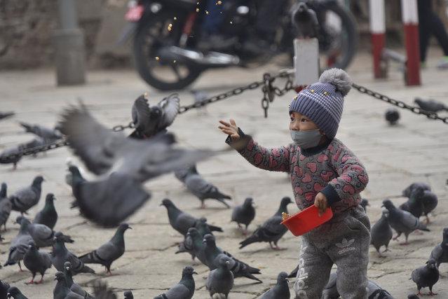 A Little kid offering grains toward pigeons in Basantapur Durbar Square, Kathmandu, Nepal on Monday, January 04, 2021. (Photo by Narayan Maharjan/NurPhoto via Getty Images)