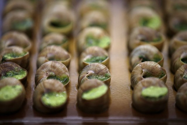 Snails with butter, garlic and parsley are seen at the gastronomy and fine foods pavilion in Rungis International food market as buyers prepare for the Christmas holiday season in Rungis, south of Paris, December 11, 2015. (Photo by Philippe Wojazer/Reuters)