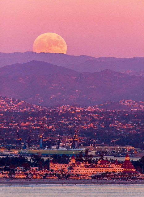 The supermoon rises over pink-hued mountains near San Diego in California, USA on November 13, 2016. Supermoons occur about once every 14 months on average. However, Sunday night's supermoon is extra super because the moon will be even closer to Earth than usual. At its closest approach, the moon will be 221,524 miles from our planet, compared with an average distance of 238,900 miles. The last time the moon sailed this close to Earth was on Jan. 26, 1948, when it came 30 miles closer. (Photo by Daren Fentiman/ZUMA Wire/Rex Features/Shutterstock)