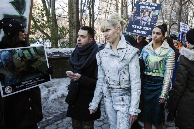 Animal rights protesters hold signs in front of designer Viktor Luna (2nd L) as he walks on a sidewalk after a ride in a horse drawn carriage along 59th St in New York February 11, 2015. (Photo by Lucas Jackson/Reuters)