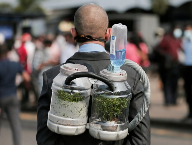 A climate activist wears an oxygen mask to demonstrate the possibility of pumping oxygen from a tree in a bottle in the future, during a protest against the government's deforestation practices of Sri Lanka's main wildlife forests for developments in Colombo, Sri Lanka on March 22, 2021. (Photo by Dinuka Liyanawatte/Reuters)
