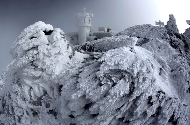 In this Tuesday, March 10, 2015 photo, rime ice covers rocks on the summit of Mount Washington in New Hampshire. Rime ice occurs when freezing fog hits stationary objects in frigid conditions. (Photo by Robert F. Bukaty/AP Photo)