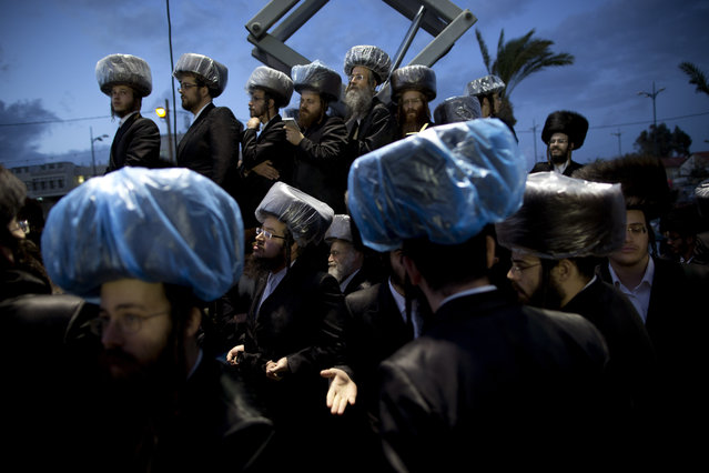 Ultra-Orthodox Jews gather in the men's section during the wedding of the grandson of the Rabbi of the Tzanz Hasidic dynasty community, in Netanya, Israel, Tuesday, March 15, 2016. (Photo by Oded Balilty/AP Photo)