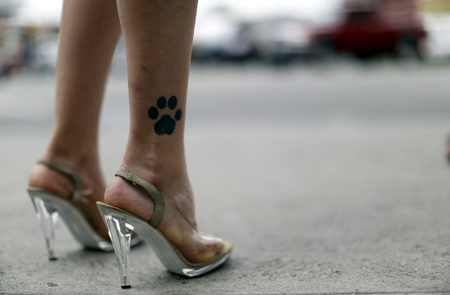 A People for the Ethical Treatment of Animals (PETA) activist's tattoo is seen as she promotes a vegan diet in Los Angeles, California May 21, 2015. (Photo by Mario Anzuoni/Reuters)
