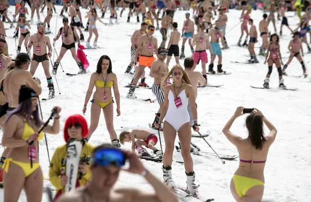 Skiers and snow boarders descend from a slope as they attempt to break the record for mass skiing in swimming suits at Rosa Khutor resort near Sochi, Russia, April 9, 2016. (Photo by Kazbek Basayev/Reuters)