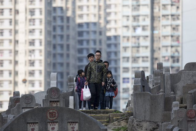 A family makes its way to their deceased relatives' tomb in Diamond Hill cemetery in Hong Kong, China, 04 April 2017. According to the lunar calendar, the Qingming Festival is observed on 04 April . The Qingming Festival, also known as Tomb-Sweeping Day, is marked by Chinese people by going to the cemetery to cleaning up tombs, bring flowers, and making offerings to their ancestors. (Photo by Jerome Favre/EPA)