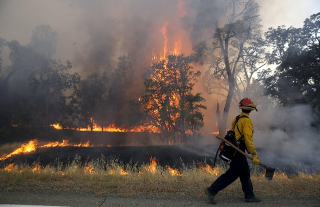 A firefighter walks past flames from the Jerusalem Fire in Lake County, California August 13, 2015. (Photo by Robert Galbraith/Reuters)