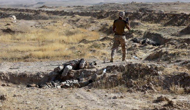 A member of the Iraqi security forces walks near the bodies of Islamic State militants outside the city of Tikrit, August 15, 2015. (Photo by Reuters/Stringer)