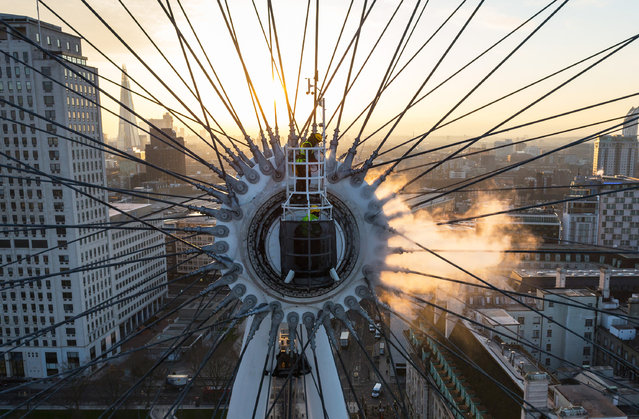 A team cleans the London Eye. (Photo by Caters News Agency)
