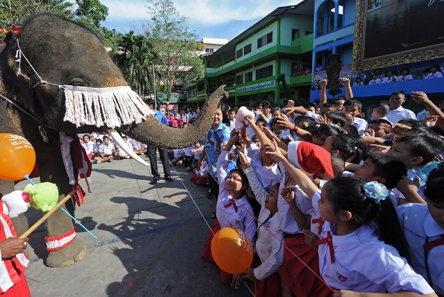 An elephant dressed in a Santa Claus costume gives a toy to students ahead of the Christmas festival at a school in Ayutthaya province on December 23, 2011. The event was held as part of a campaign to promote Christmas in Thailand. AFP PHOTO/Pornchai  KITTIWONGSAKUL (Photo credit should read PORNCHAI KITTIWONGSAKUL/AFP/Getty Images)