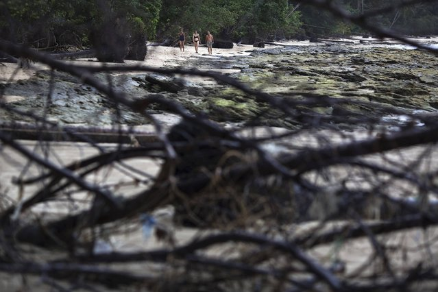 Foreign tourists walk on a small beach with fallen trees and damage still visible from the 2004 tsunami in Khao Lak, in Phang Nga province, about 110 km (68 miles) north of the resort island of Phuket, December 14, 2014. (Photo by Damir Sagolj/Reuters)