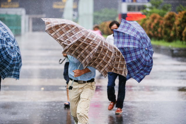 People walk holding umbrellas in rain brought by Typhoon Haima, in Shenzhen, Guangdong province, China, October 21, 2016. (Photo by Reuters/Stringer)