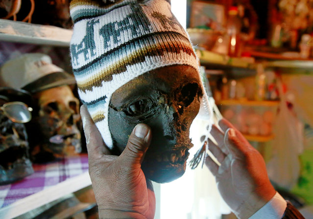 A devote holds a skull before the celebrations of The Day of Skulls in El Alto, on the outskirts of La Paz, Bolivia, November 7, 2016. (Photo by David Mercado/Reuters)