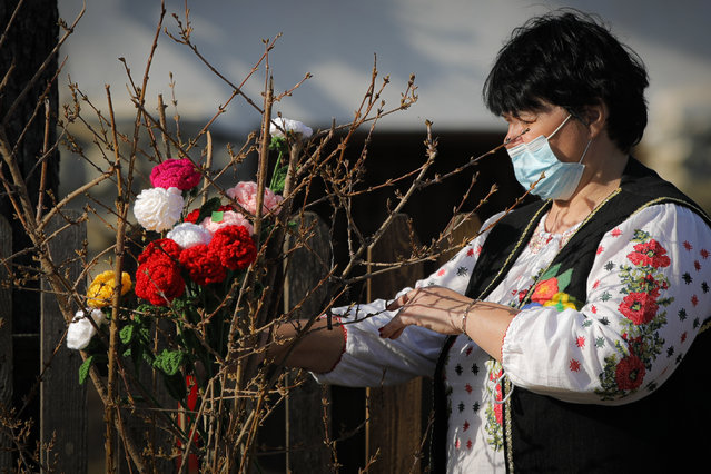 A woman wearing a face mask places knitted flowers in a bush during a spring charms fair at the Dimitrie Gusti Village Museum Museum in Bucharest, Romania, February 27, 2021. Millions of East Europeans celebrate the arrival of spring on March 1 with charms tied with red-and-white string, a centuries-old custom symbolizing hope and a new season. (Photo by Vadim Ghirda/AP Photo)