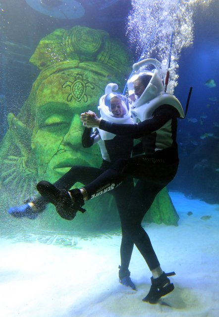 Strictly Come Dancing stars Ola Jordan  and Ashley Taylor Dawson practising their dance moves under water at the Sea Life Centre in Manchester, on November 22, 2013. (Photo by Dave Thompson/PA Wire)