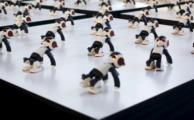 A hundred humanoid communication robots called Robi perform a synchronized dance during a promotional event called 100 Robi, for the Weekly Robi Magazine, in Tokyo, in this January 20, 2015 file photo. (Photo by Yuya Shino/Files/Reuters)