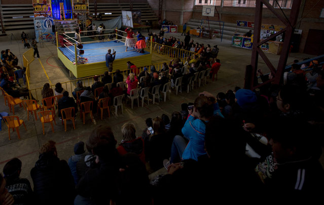 Veteran cholita wrestler Reyna Torrez stands in the corner of the ring as she competes with teen fighter Dona Chevas in El Alto, Bolivia, Sunday, February 10, 2019. Now 29, Torrez is training a new cohort of wrestlers, aged 16 to 19, in hopes of keeping the sport alive. (Photo by Juan Karita/AP Photo)