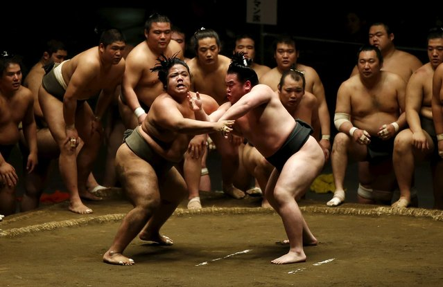 Sumo wrestlers of Nishonoseki clan take part in a joint training session ahead of the May Grand Sumo Tournament in Tokyo May 2, 2015. (Photo by Toru Hanai/Reuters)