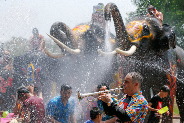 A man plays a trumpet while people are splashed by elephants with water during the celebration of the Songkran water festival in Thailand's Ayutthaya province, north of Bangkok, April 11, 2016. (Photo by Jorge Silva/Reuters)