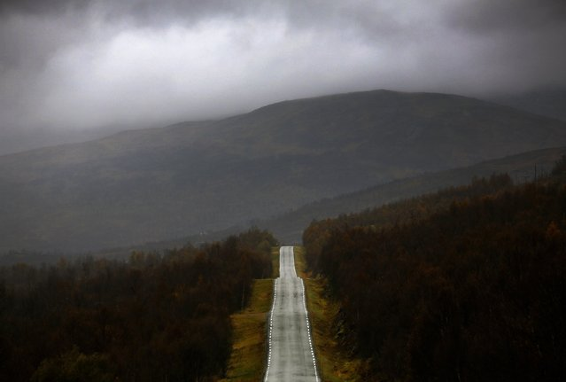 A road cuts through a forest during a rainy day on the island of Senja, north of the Arctic Circle in Norway September 29, 2014. (Photo by Yannis Behrakis/Reuters)