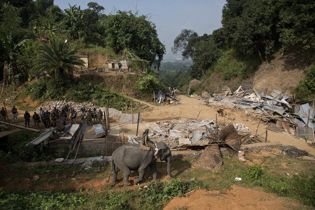 An elephant is brought to demolish buildings and other structures during an eviction drive inside Amchang Wildlife Sanctuary on the outskirts of Gauhati, Assam, India, Monday, November 27, 2017. (Photo by Anupam Nath/AP Photo)