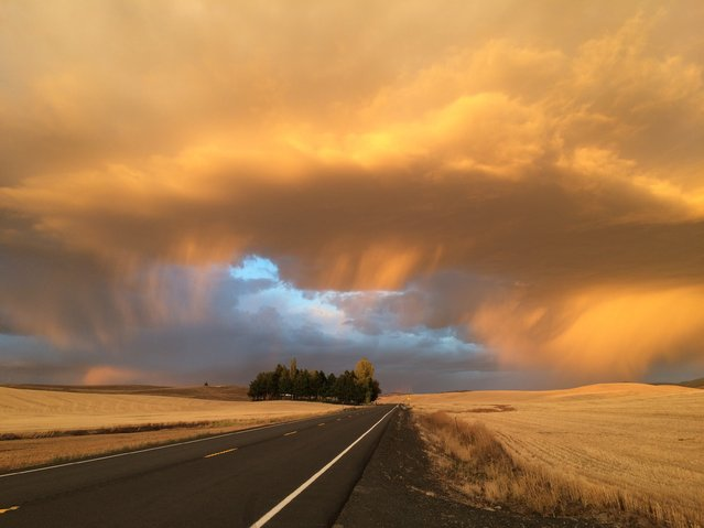 """Autumn Storm"". On my drive home from work I rounded the corner and found this amazing cloud formation during an autumn storm. This is snapped on the side of the road with my iPhone, no filters. Words cannot describe how beautiful it was to see, and the colors were amazing the way they contrasted with each other. Photo location: Pullman, Washington, United States. (Photo and caption by Amanda Beardslee/National Geographic Photo Contest)"