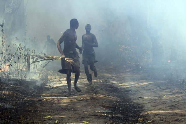 In this photo of Saturday March 16 2019, men run out of a burning field after setting it on fire, a tactic used to clear swaths of land and use it for cultivation but its a tactic that threatens nearby animal park land. South Sudan is trying to rebuild its vast national parks and game reserves following a five-year civil war that killed nearly 400,000 people. The conflict stripped the country of much wildlife but biodiversity remains rich with more than 300 mammal species, including 11 primates, but poaching is a growing threat. (Photo by Sam Mednick/AP Photo)