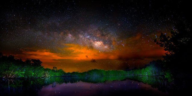 Brush fires in Everglades National Park, Florida make for a dramatic Milky Way in this panorama. A photographer set out to inspire awe in nature's wonders through the tropical wetlands of Florida. (Photo by Mark Andrew Thomas/Rex Feature/Shutterstock)