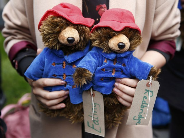 A demonstrator holds Paddington Bear soft toys during a protest highlighting the plight of child refugees, outside the Home Office in London, Britain October 24, 2016. (Photo by Peter Nicholls/Reuters)