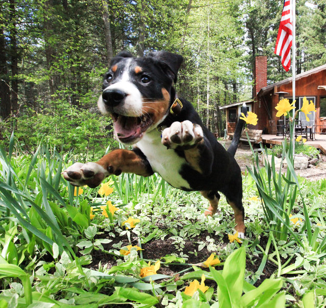 """""""Excited for Spring""""! (Photo by Aaron A.)"""