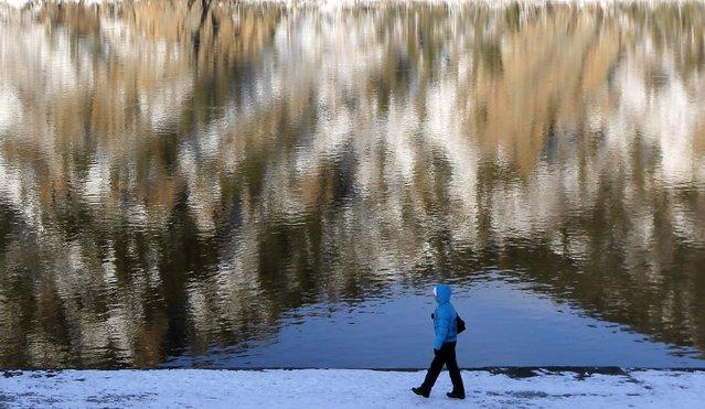 A pedestrian walks along an embankment of the Yenisei River in Divnogorsk town, near the Russian Siberian city of Krasnoyarsk, February 12, 2015. (Photo by Ilya Naymushin/Reuters)
