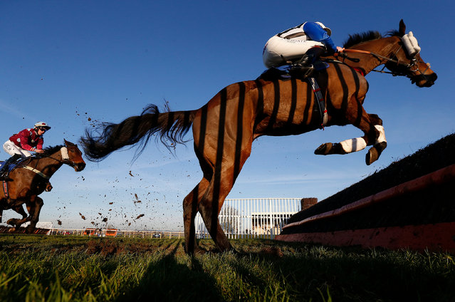 Jamie Moore riding Alfie Spinner lead all the way to win The Higos Insurance Services Somerset National Handicap Steeple Chase at Wincanton Racecourse on January 19, 2017 in Wincanton, England. (Photo by Alan Crowhurst/Getty Images)