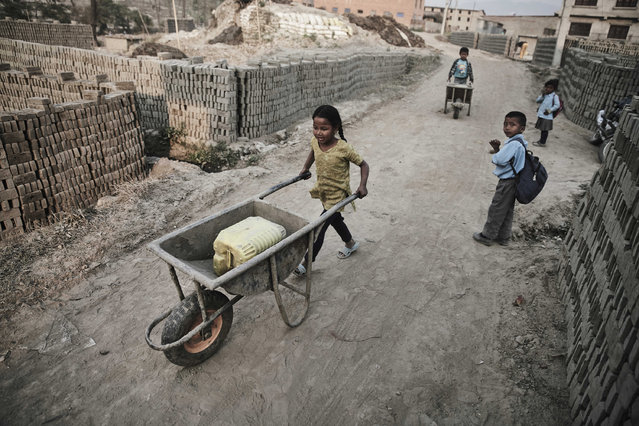 As two children head off to school two others push wheelbarrows during their brick kiln shifts in Kathmandu Valley, Nepal, 20 March 2016. (Photo by Jan Moeller Hansen/Barcroft Images)