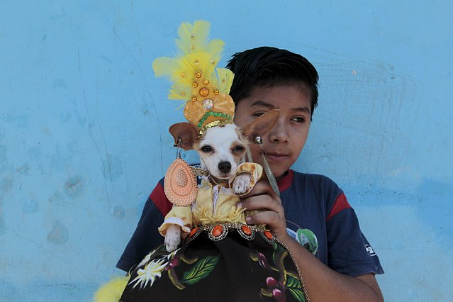 A boy and his dog pose for pictures during a mass in honor of San Lazaro at the Magdalena church in the indigenous community of Monimbo in Masaya, Nicaragua March 13, 2016. (Photo by Oswaldo Rivas/Reuters)