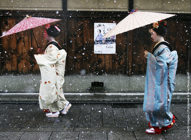 Maiko and Geisha walk in the snow at Gion in Kyoto