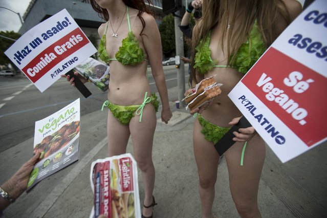 Activists from People for the Ethical Treatment of Animals (PETA) hold signs promoting a vegan diet in Los Angeles, California May 21, 2015. (Photo by Mario Anzuoni/Reuters)