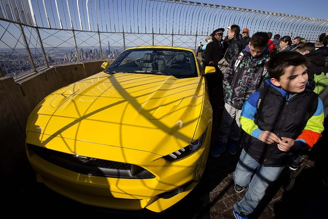 People walk past the Mustang Wednesday afternoon. It will remain on display through Friday. (Photo by John Minchillo/Associated Press)