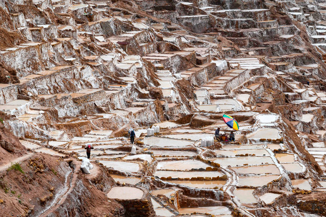 People work at the Maras salt-evaporation ponds, 48 km northeast of Cusco, Peru, on April 29, 2019. Salt pools, which have been used since pre-Inca times to obtain salt for multiple uses, are one of the tourist attractions in the Cusco area. (Photo by Pablo Porciuncula Brune/AFP Photo)