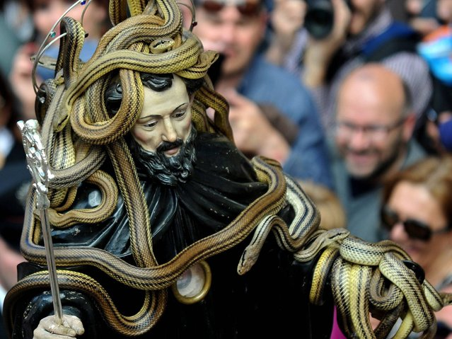 A statue of Saint Domenico covered with live snakes is carried by the faithful during an annual procession in the streets of Cocullo, in the Abruzzo region, on May 1st, 2014. (Photo by Tiziana Fabi/AFP Photo)