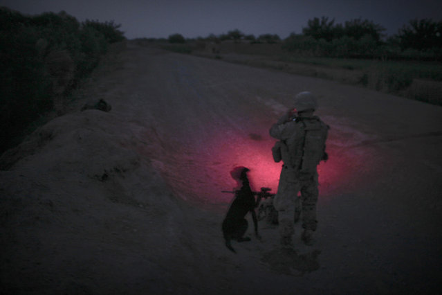 Afghanistan: Dogs of War Part 1