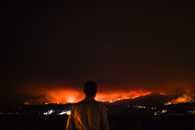 A man stands on the roadside and watches a wildfire at Anciao, Leiria, central Portugal, on June 18, 2017. A wildfire in central Portugal killed at least 25 people and injured 16 others, most of them burning to death in their cars, the government said on June 18, 2017. Several hundred firefighters and 160 vehicles were dispatched late on June 17 to tackle the blaze, which broke out in the afternoon in the municipality of Pedrogao Grande before spreading fast across several fronts. (Photo by Patricia De Melo Moreira/AFP Photo)