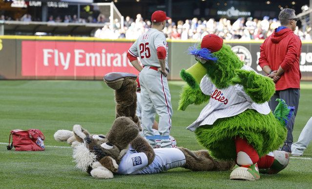 The Phillie Phanatic mascot clowns around with the Mariner Moose before a baseball game between the Seattle Mariners and the Philadelphia Phillies, Tuesday, June 27, 2017, in Seattle. (Photo by Ted S. Warren/AP Photo)
