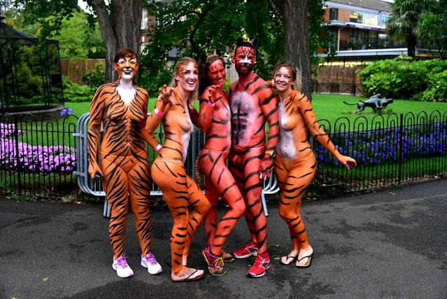 Streakers stand close ZSL London Zoo, London, during ZSL's Streak for Tigers, which raises funds for the organisation's work protecting tigers through global conservation projects on August 13, 2015. (Photo by Nils Jorgensen/REX/SIPA Press)