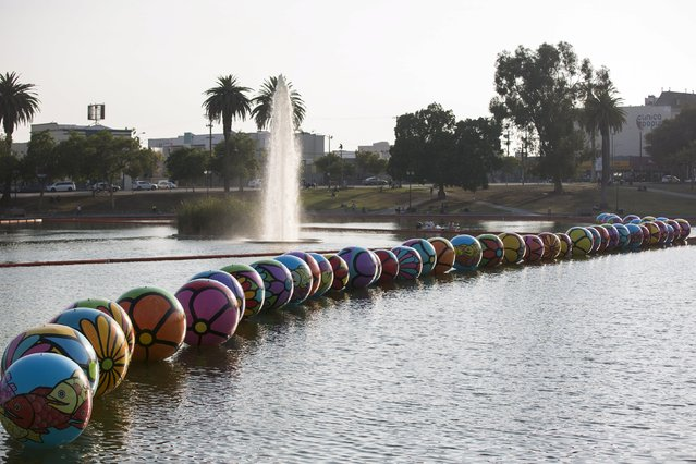 "Inflated spheres are pictured in MacArthur Park Lake during the installation of Portraits of Hope's exhibition ""Spheres at MacArthur Park"" in Los Angeles, California August 21, 2015. (Photo by Mario Anzuoni/Reuters)"